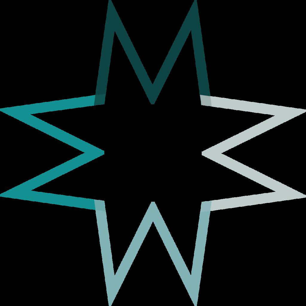 icon from Marshall Insight logo